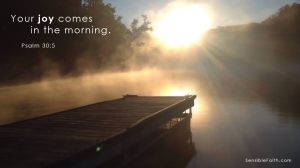 Your Joy Comes in the Morning (Psalm 30:5).  http://www.SensibleFaith.com
